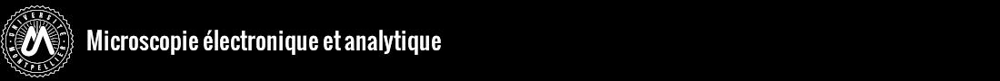 Microscopie électronique et analytique Logo